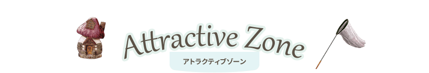 Attractive Zone